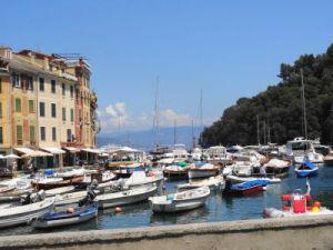 2012 236 Portofino