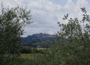 237 Montepulciano