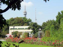 061 Petrinheuvel Uitkijktoren is een kopie vd Eifeltoren, 60 m hoog en 299 treden