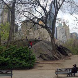 299 Central Park2