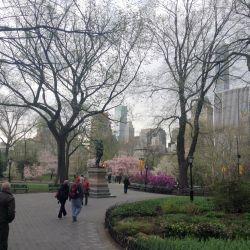 305 Central Park11